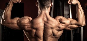 Grab The Best Of Sarms On Sale And Regain Your Health